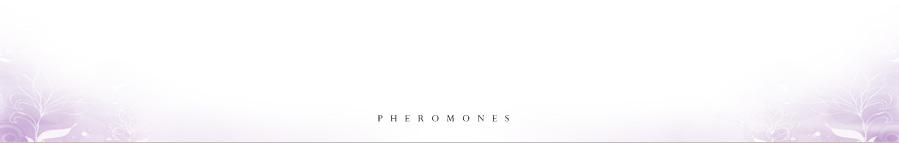 情定費洛蒙香水-無香男用LKU 35ml,桃花.交友.聯誼.推銷.面試.魅力.情慾.情人.吸引.幸福信息素.美國製無香
